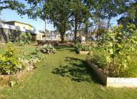 Présentation du Jardin «Les jeunes pousses»